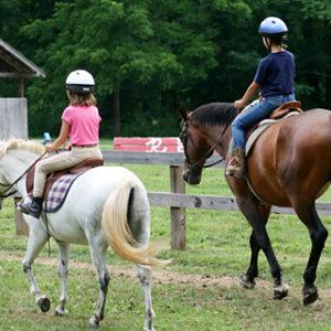 horse-teen-girl