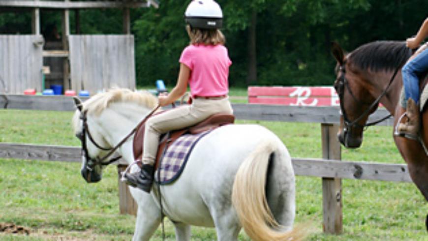 Pony Land's Short-Stirrup Superstars